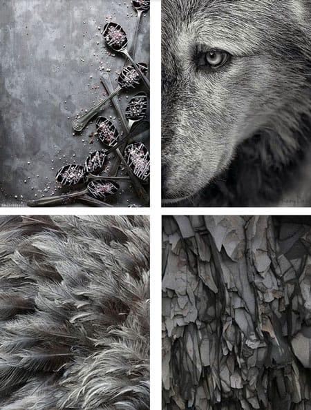bold-shades-of-gray