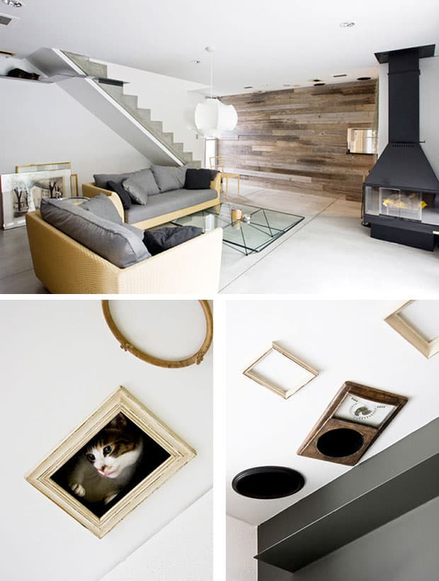 interior-design-and-cats