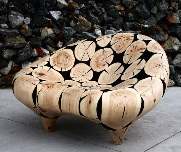 lounge-chair-in-big-cone-pine-cross-sections