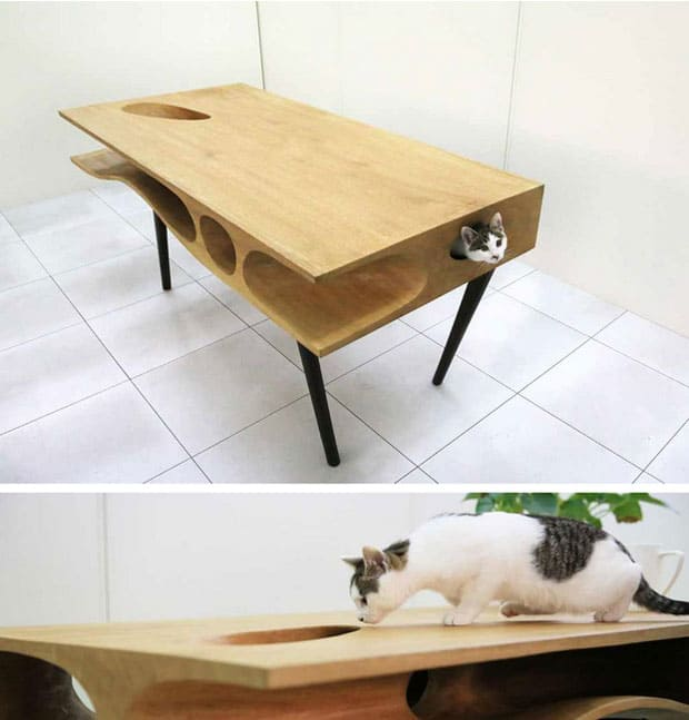 table-for-cat