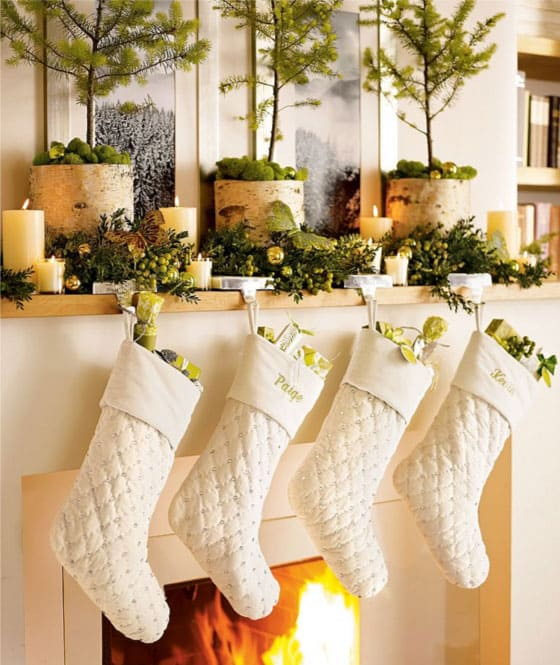 pine-branches-for-christmas-decor