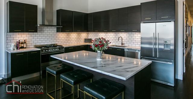 Artistic Urban Chicago Kitchen Renovation